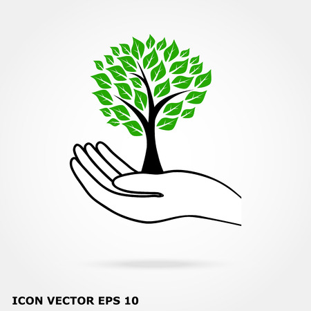 tree in hand Vector