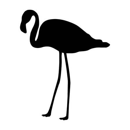 flamingo silhouette on a white background Illustration