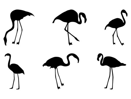 set of silhouettes of flamingos on a white background