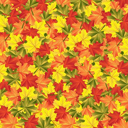 autumn background: background autumn maple leaves Illustration