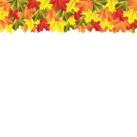 autumn leaves background: autumn maple leaves Illustration