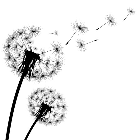 white background: black silhouette with flying dandelion buds on a white background