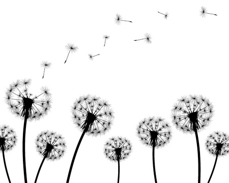 background dandelion faded silhouettes on a white background Vettoriali