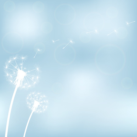 posterity: silhouette with flying dandelion buds on a white background