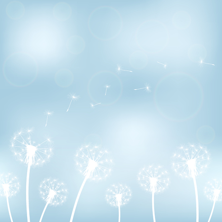 overblown: vector illustration silhouette with flying dandelion buds