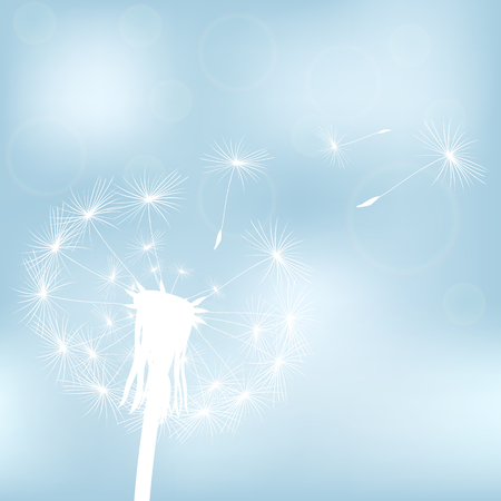 decode: silhouette with flying dandelion buds on a white background