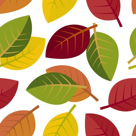 Seamless autumn leaves on a white background. vector illustration