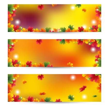 green banner: Beautiful Autumn banners with maple leaves background Golden autumn season