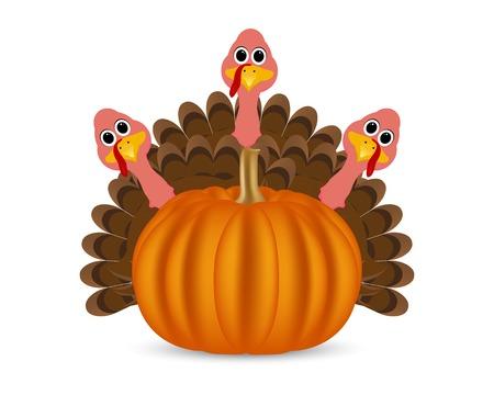 feast: Turkeys cartoon with pumpkins on the feast day of thanksgiving Illustration