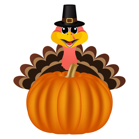 Turkey in Peligrin hat on Thanksgiving Day looks out from behind a pumpkin. Symbols Thanksgiving holiday, vector illustration Illustration