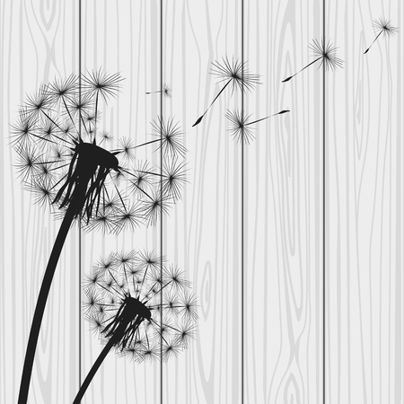 overblown: Silhouette with flying dandelion buds Illustration