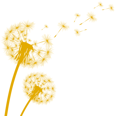 Silhouette of a dandelion on a white background Ilustracja