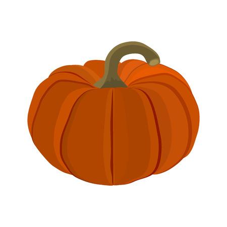 Halloween pumpkin on a white background Illustration