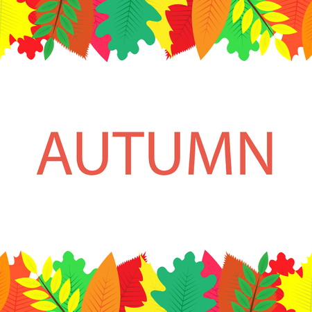 Autumn banner with multi-colored leaves, white background Ilustração
