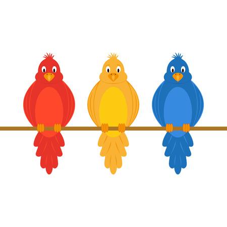 colorful amusing parrots on a white background Ilustração