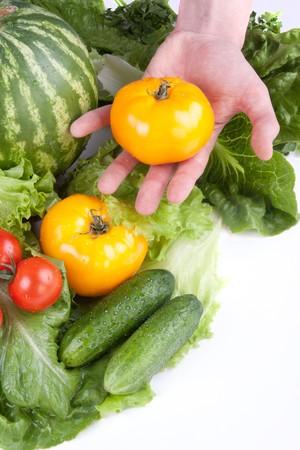 Holding yellow tomatoe photo
