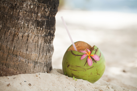 Fresh coconut on the beach Banque d'images