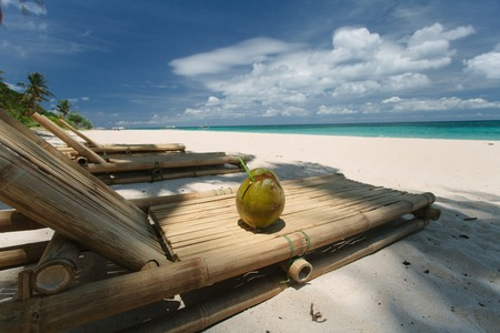 Fresh coconut on the beach 写真素材