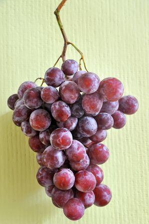 dark purple: dark purple grapes