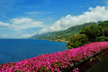 idyll: view on Recco with pink Bougainville Stock Photo