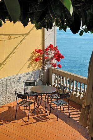 bougainvillea: Summer sea terrace