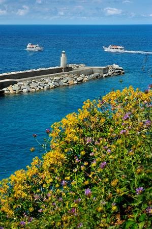 vuurtoren met gele bloemen in de Middellandse Zee