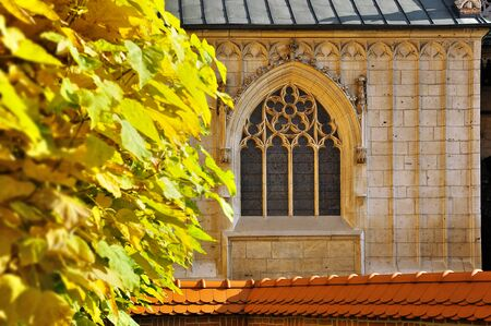 gothic window: old gothic window