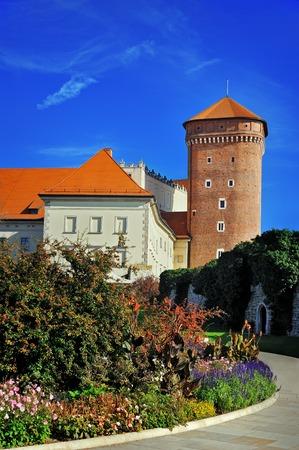 entrance: Wawel entrance