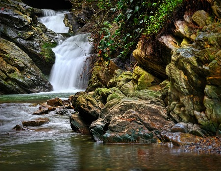 greenery: mountain waterfall with stones in moss and greenery