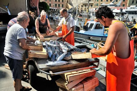 Camogli, Liguria, Italy - June 15, 2015: Fishermans with a catch in Camogli port