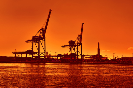 terminal cranes and forklifts in Genova port with orange sky