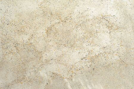 skewbald: dotted stucco imitation of spotty stone texture background