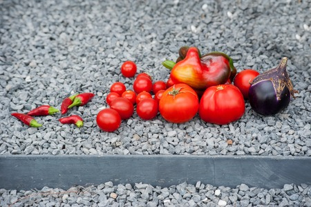 Eggplant, tomato and Bell pepper on a stone background