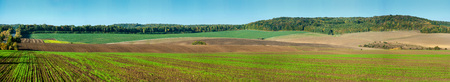 Big panoramic view of colored lines of fields