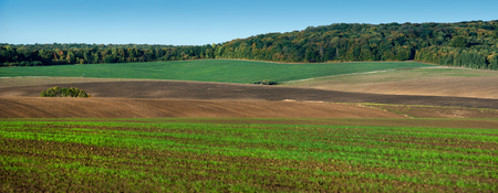 panoramic appearance of colored lines of fields Stock Photo