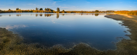Lake with vegetation on the sandy shore panoramic view