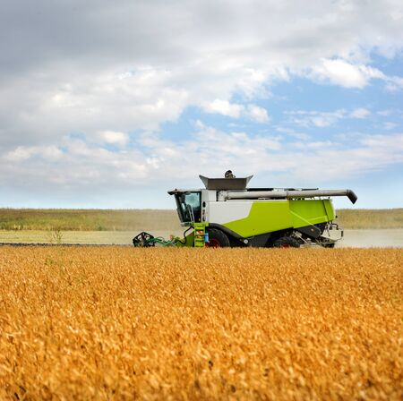 the harvester harvests soybeans, soybeans in the autumn and beautiful cloudly sky Reklamní fotografie