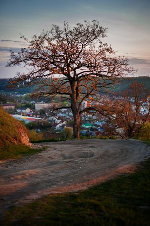 Lone tree near old road under panoramic view at the town, sunset light Banque d'images - 144155759