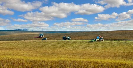 sowing in the field, machines with bags of fertilizers that make soil in the sowing