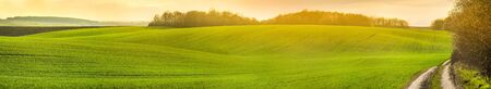 panoramic view of agricultural lands, farmland in springtime sunset Banque d'images