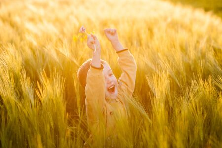 Happy boy playing in wheat ears, warm light evening sunlight, baby illustrations Banque d'images