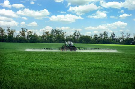sprayer with fertilizers on green wheat, rear view, fertilizers on agricultural fields of Ukraine.