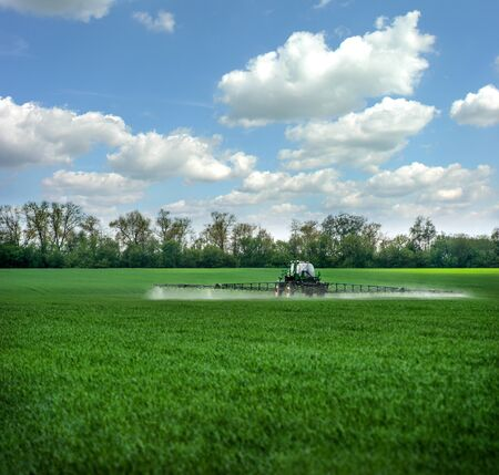 Green fields in the spring, sprayer fertilizes with fertilizers, rear view, fertilizers on agricultural fields of Ukraine.