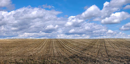 the field is waiting for sowing after the harvest in late autumn on a cloudy day