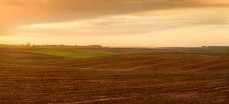 Landscape panoramic view of plowing farmland with evening sky
