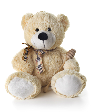 teddy bear isolated on the white background