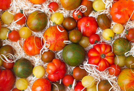 set of various ripe tomatoes with sawdust
