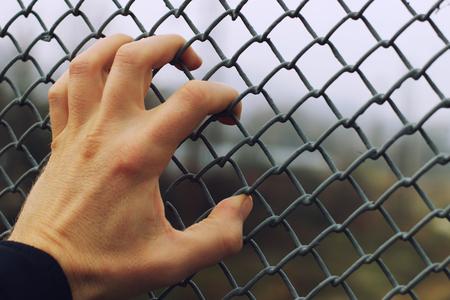 Hand and grid fences close-up Standard-Bild - 114655358