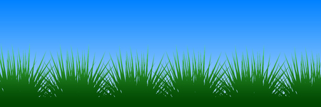 Green grass on blue background - vector illustration