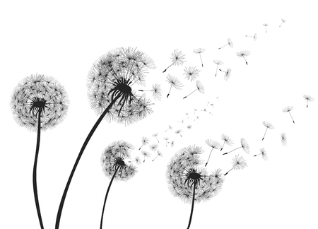 Abstract dandelions with flying seeds. Stock Illustratie